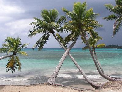 7294 playa-bonita
