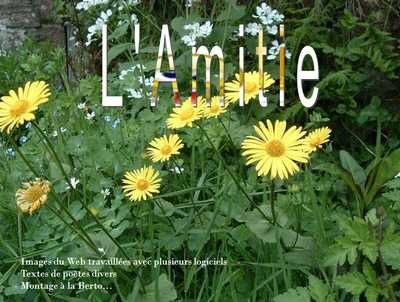 l-amitie.jpg