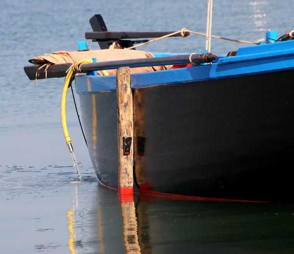crialeis-sous-marin.jpg