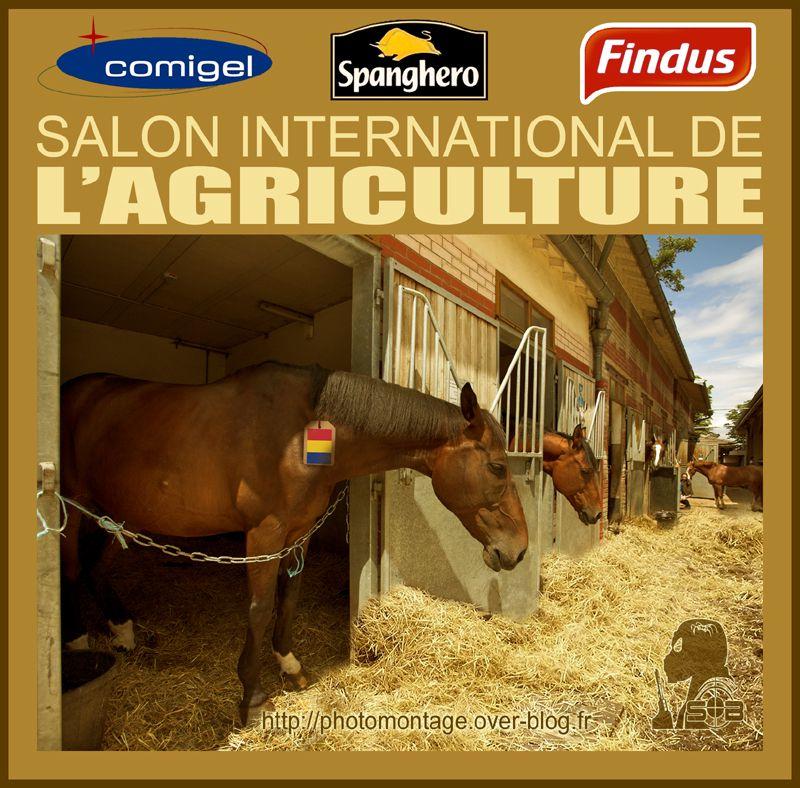 Salon-agriculture-sblesniper-800.jpg