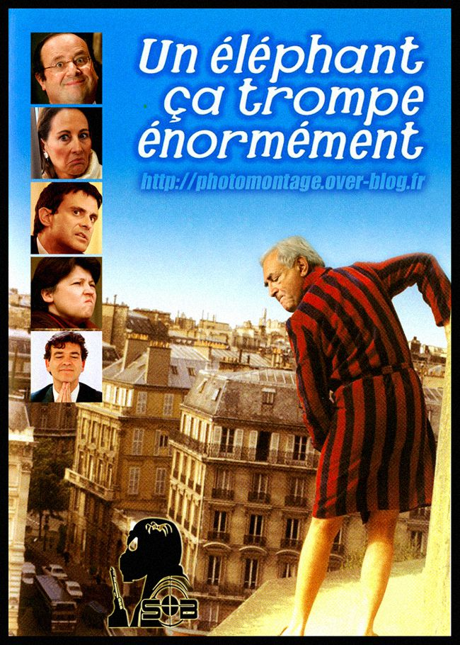 un-elephant-ca-trompe-enormement-DSK-sblesniper650.jpg