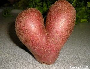 patate-coeur.jpg