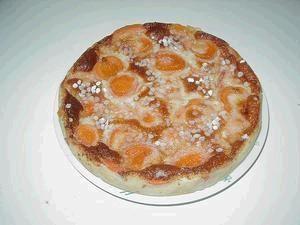 clafoutis-au-abricots.JPG