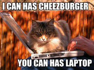 i-can-has-cheezburger-you-can-has-laptop.jpg