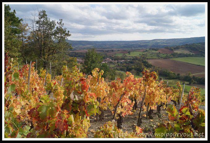 Boudes-63-Les-vignes-en-automne.jpg