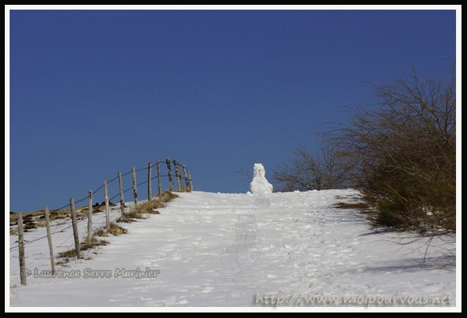 bonhomme-de-neige-Parrot-63.jpg