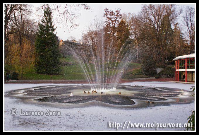 Le Bassin Gel Du Jardin Lecoq Clermont Ferrand 1 3