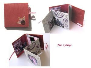 Mini-Solange-copie-1.jpg