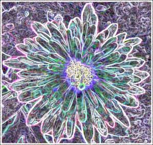 Bandeau-fleurs.jpg