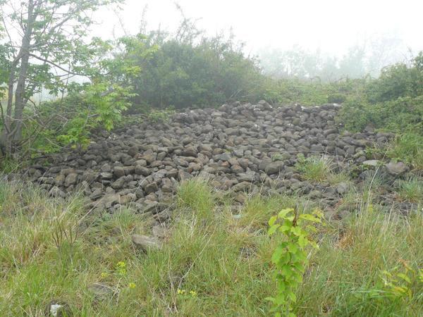 plateau-de-gergovie-58-copie-1.jpg
