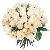 ROSES-BLANCHES.jpg