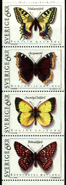 1209-Papillons