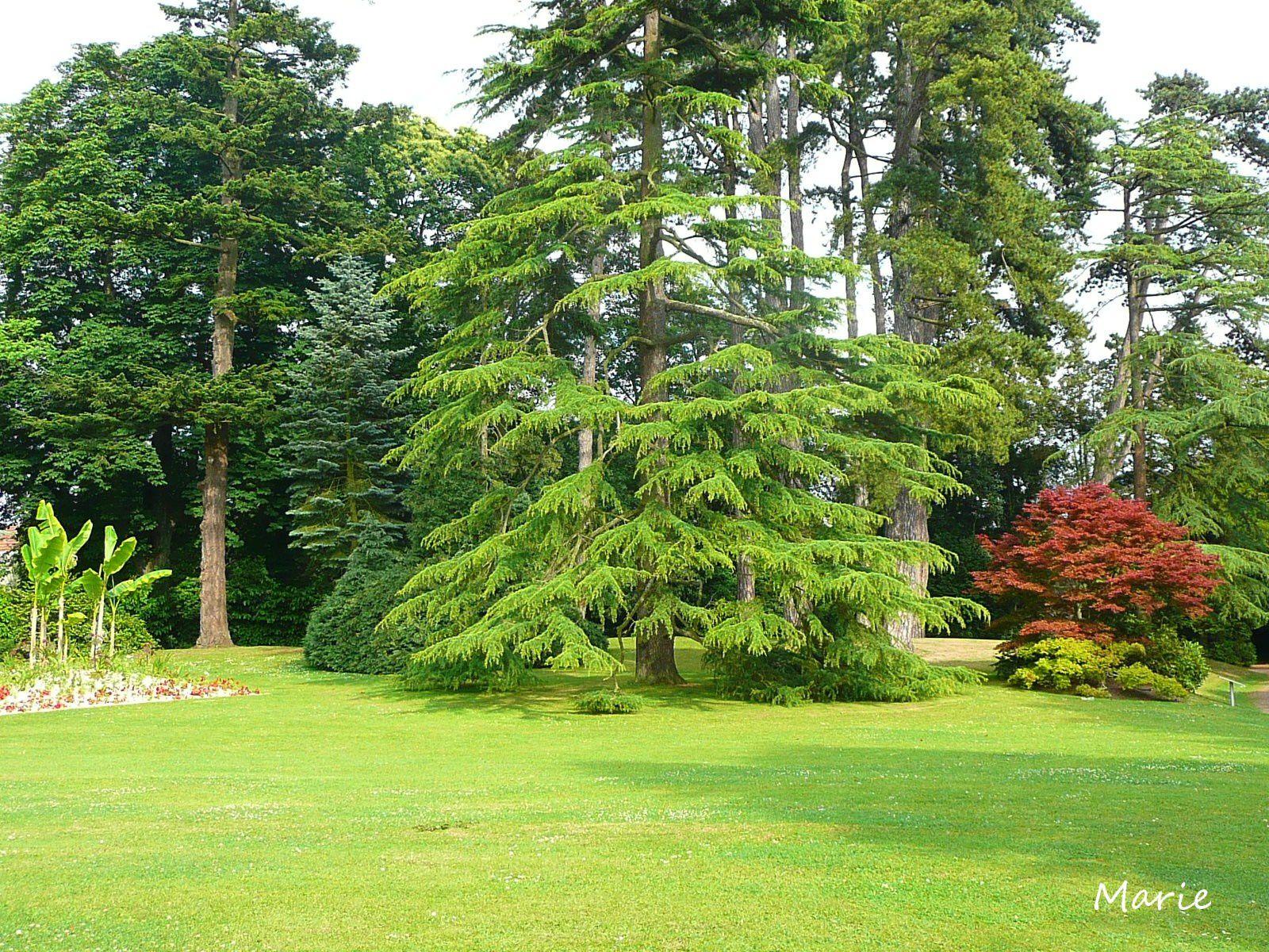 A bayeux le jardin botanique vadrouillons for Entretien jardin bayeux