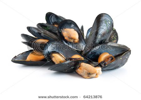 stock-photo-group-of-mussels-boiled-with-garlic-and-parsley.jpg