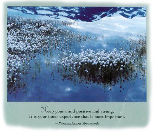 innerexperience.jpg