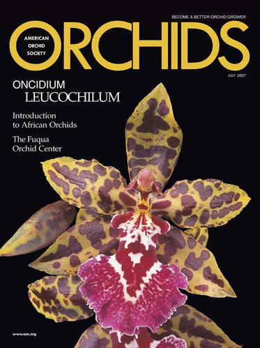 orch-76-07-cover.jpg