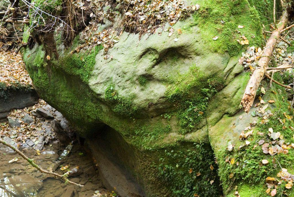 Entre Darney et Vittel, le mystérieux vallon des ermites, avec sa cascade et les ruines de nombreuses chapelles perdues dans la forêt. A proximité, les ruines de la Tour des Seychelles-ancien bastion Templier, hanté par la Dame blanche.