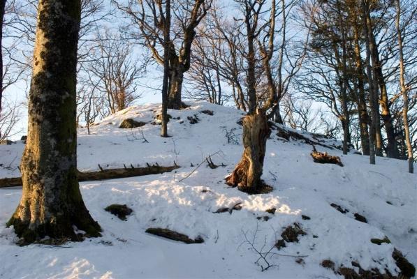 Randonnée autour du Grand Ballon dans la neige. Grottes de glace. Sommet du Grand Ballon et refuge Sattelfels. Pleine lune sur le Grand Ballon et randonneur. Chiens de traineau.  Alpes bernoises vues du Grand Ballon. Empreintes dans la neige et randonnée vers le sommet du Storkenkopf (Cairn qui n'existe plus actuellement). Bivouac et lever de soleil au refuge Sattelfels et rocher du même nom. Paysages de neige autour du Grand Ballon, Pétasites dans la neige.