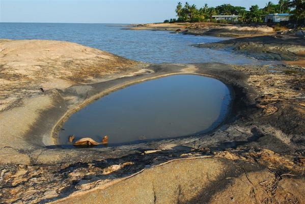 Paysages et animaux de Guyane - Cayenne, Kourou