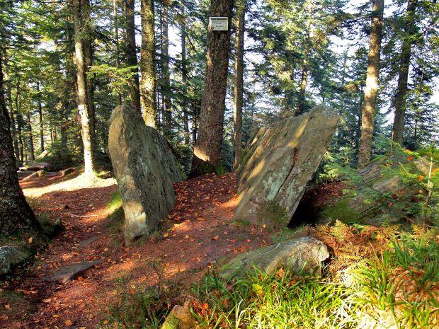 Aout 2006 - Les rochers remarquables  (roche des oiseaux, roche du Sapin Sec, roches des Abris etc) et les vestiges des aménagements pendant la guerre de 14/18, très bien valorisés, au sommet de l'Ormont à Saint Dié.