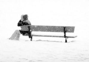 Waiting-under-the-snow--Yves-Jardon.jpg