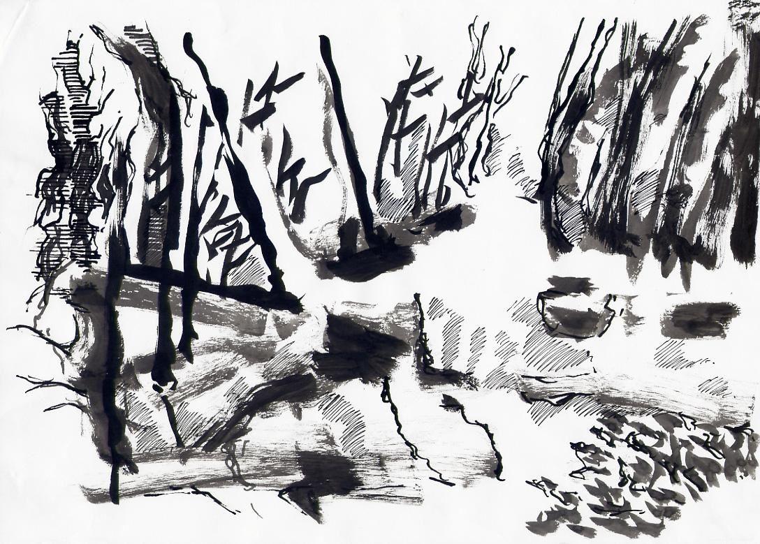 Frédéric Fau, 2008, encre de chine sur papier, 21x29,7cm