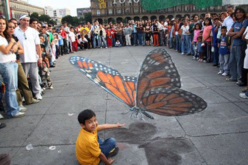 Beever butterfly