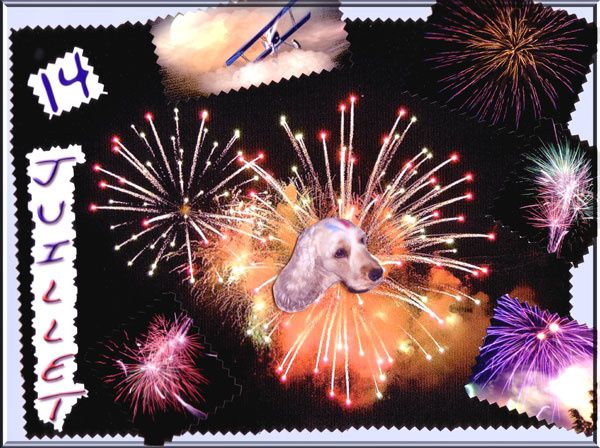feux d'artifice scrapbooking