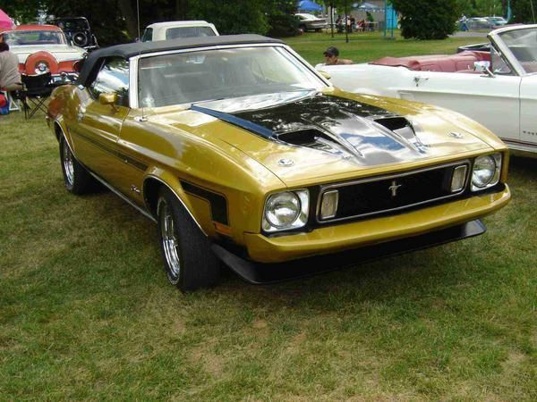 FORD-Mustang-Mack-1-1973.jpg