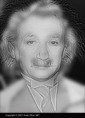 marilyn-einstein-mini.jpg
