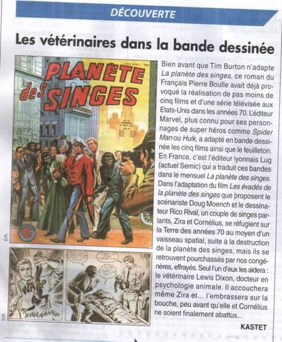 plan--te-des-singes-article.jpg