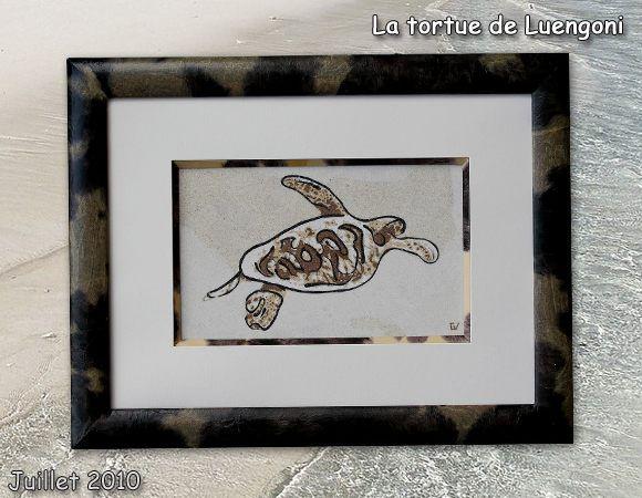 tortue-luengoni-blog-juillet10.jpg