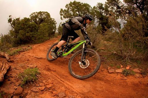 Action specialized MTB Pitch