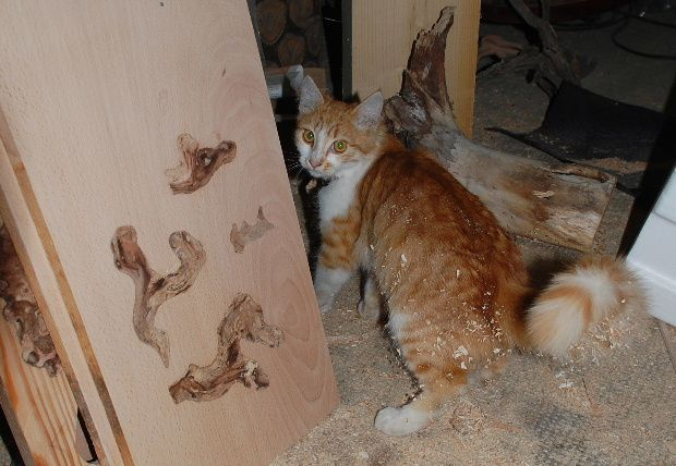 chat atelier 2011 a