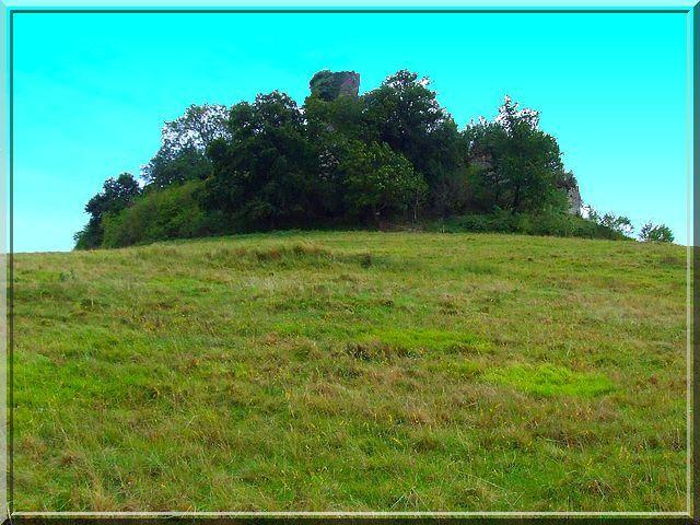 Le château a si honte de n'être que ruine qu'il se cache dans un petit bois