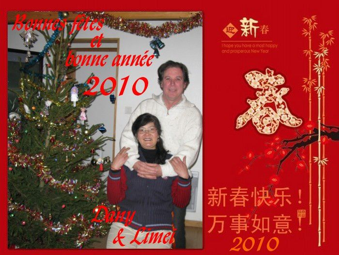 happy_new_year2010.jpg