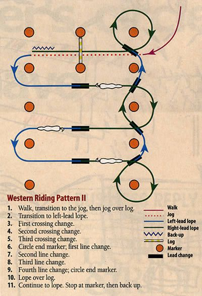 trace-travail-cheval-equitation-americaine.jpg