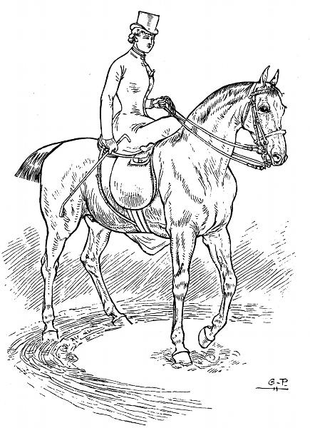 dessin-equitation-en-amazone-cavaliere.png