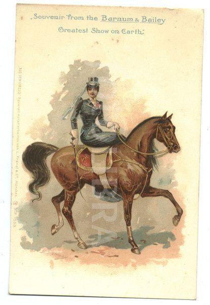 72470-high-school-horse-circa-1905.jpeg