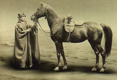 Lady-Anne-Blunt--in-Bedouin-attire--with-her-favourite-ridi.jpg