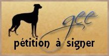 icone-petition-a-signer-def-galgos-ethique-europe