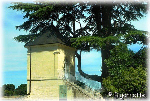 journee-blogueur-Parnay-et-Montsoreau-081.JPG