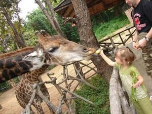 mary-girafe.jpg