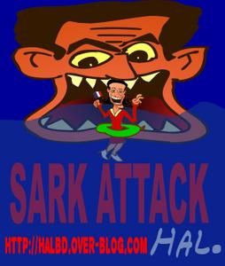 sark-attack-for-blog.jpg