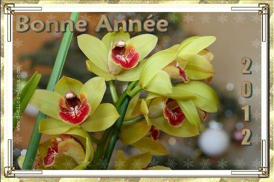 carte-bonne-annee-2012-meilleurs-voeux-2012-36-d-clics-disa.jpg