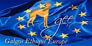 logo-bleu-galgos-ethique-europe-web4match-373