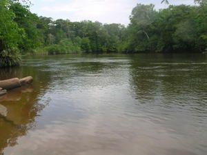 fleuve-kourou.jpg