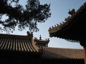 Beijing--first-days---Forbidden-City--164-.JPG
