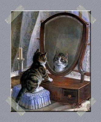 chat-miroir-tendremamie127246164638_art.jpg