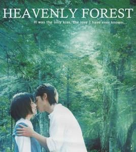 heavenly-forest.JPG